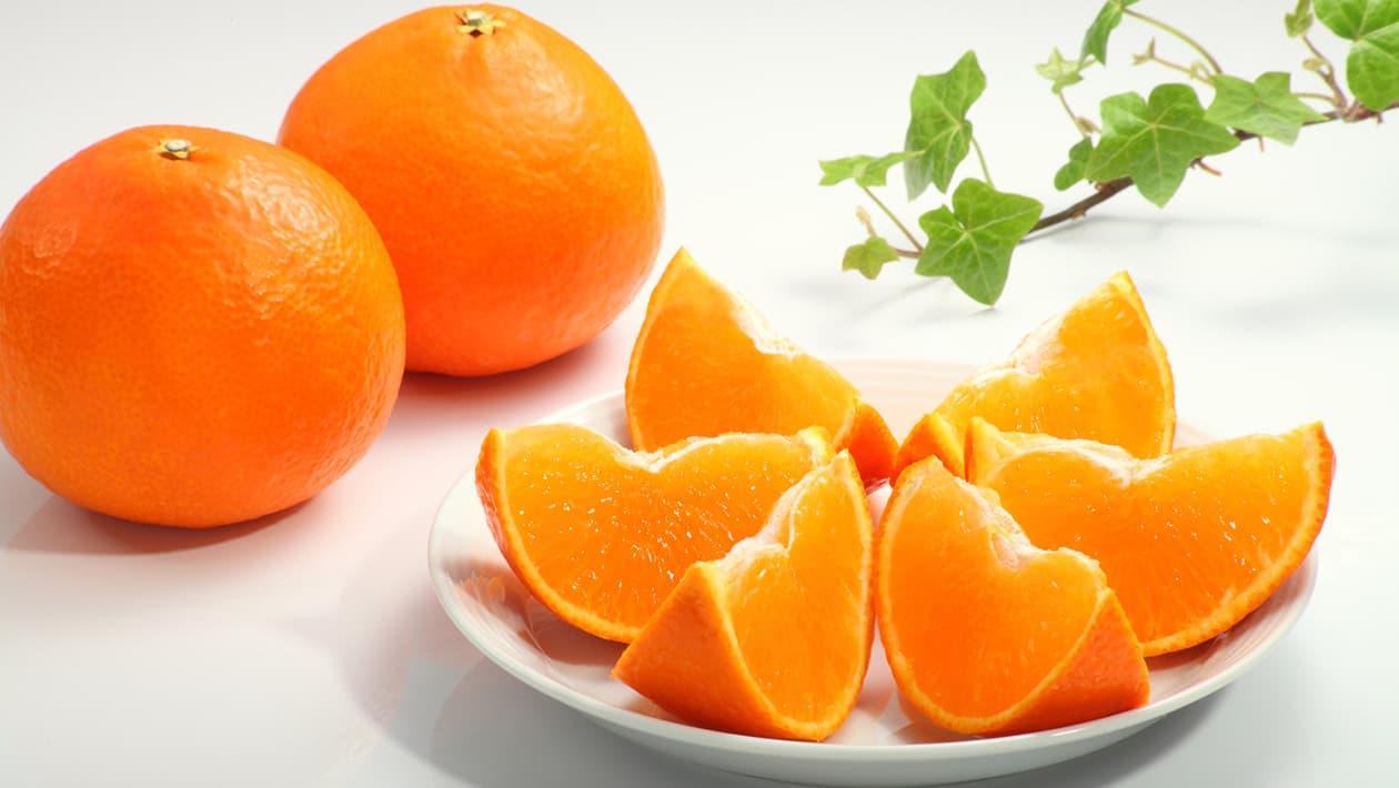 柑橘、蜜柑