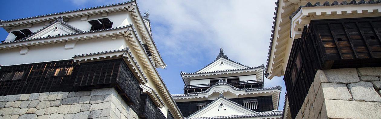 【松山王道路线】如果想在松山观光1日的话,向您推荐此路线!松山景点一日游。